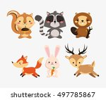 squirrel raccoon beaver fox... | Shutterstock .eps vector #497785867