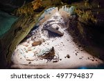 sun light in the cave ... | Shutterstock . vector #497794837
