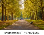 Small photo of Tree lined street in Hyde Park London, autumn season