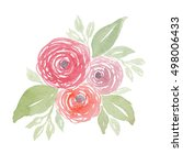 watercolor cabbage roses ... | Shutterstock . vector #498006433