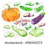 hand painted watercolor... | Shutterstock . vector #498343273