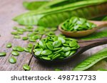 Green Popinac Seed On Wooden...