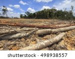 deforestation  borneo tropical... | Shutterstock . vector #498938557