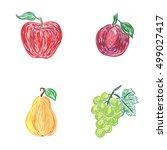 apple  plum  pear  grapes ... | Shutterstock . vector #499027417