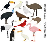 Cartoon Birds Collection....