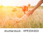 picnic vacation leisure... | Shutterstock . vector #499204303