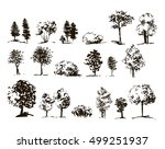 collection of trees silhouettes.... | Shutterstock .eps vector #499251937