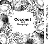 vector frame with coconuts and...