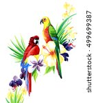 the parrot on a branch with... | Shutterstock . vector #499699387