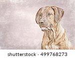 Drawing  Illustration Dog...