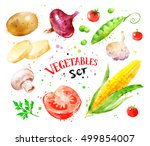 hand drawn watercolor colorful... | Shutterstock . vector #499854007