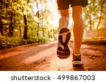 marathon run shoe. outdoor... | Shutterstock . vector #499867003