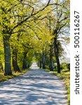 beautiful road. autumn.... | Shutterstock . vector #500116267