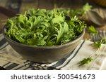 raw green organic baby kale in... | Shutterstock . vector #500541673