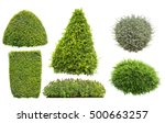 Collection Of Bush Or Shrub...