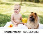 Stock photo beautiful baby playing with pomeranian spitz against green nature background outdoors focus on 500666983