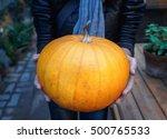 Orange Pumpkin In The Hands....
