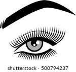 female eye with long lashes and ... | Shutterstock .eps vector #500794237