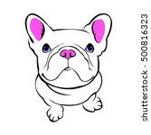 dog  vector  breed  cute  pet ... | Shutterstock .eps vector #500816323