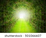 green tunnel with sun rays in... | Shutterstock . vector #501066607
