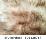 dog fur closeup. red  yellow ... | Shutterstock . vector #501128767