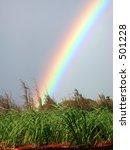 A Vivid Rainbow Captured In...