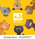 Stock vector poster pet shop cute cats yellow background 501249577