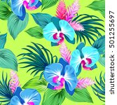 abazing vector orchids pattern... | Shutterstock .eps vector #501255697