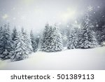 winter wonderland   christmas... | Shutterstock . vector #501389113