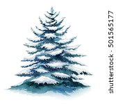 spruce in the snow. watercolor... | Shutterstock . vector #501565177