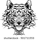 tiger face head silhouette ... | Shutterstock .eps vector #501711553