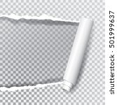 vector transparent ripped paper ... | Shutterstock .eps vector #501999637