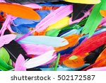 Beautiful Feathers.