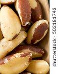 brazilian nuts | Shutterstock . vector #502181743