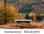foliage in new england | Shutterstock . vector #502181893