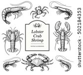 Hand Drawn Crustacean In A...