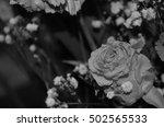 flowers roses | Shutterstock . vector #502565533