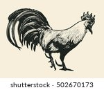 rooster. hand drawn design... | Shutterstock .eps vector #502670173