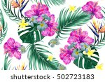 tropical flowers  palm leaves ... | Shutterstock .eps vector #502723183