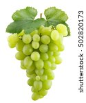 Green Grapes Isolated White Background - Fine Art prints