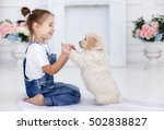 Stock photo child with little dogs playing at home girl with puppies chid with puppy kissing hugging 502838827