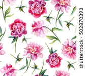 pink peony flower hand drawn... | Shutterstock . vector #502870393