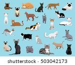 25 cat breeds cartoon vector...