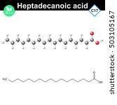heptadecanoic acid atomic...   Shutterstock .eps vector #503105167