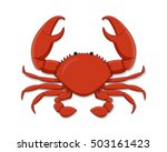 isolated flat whole crab on... | Shutterstock .eps vector #503161423