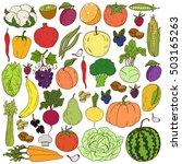 organic farm illustration.... | Shutterstock .eps vector #503165263