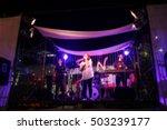 blurred concert. | Shutterstock . vector #503239177