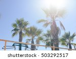 top of palm tree on sky...   Shutterstock . vector #503292517