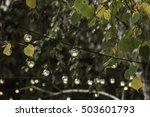 christmas garland lights at... | Shutterstock . vector #503601793
