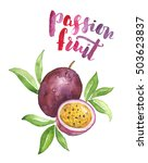 watercolor passion fruit... | Shutterstock . vector #503623837